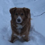 IMG_0769 Aika Schnee