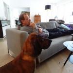 DSC00177 Hund u Herr